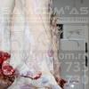 fotograf-iasi-daniel-condurachi-samcom-botosani-carne-vita-133139
