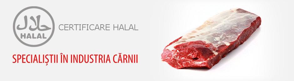 carne de vită măcinată pentru pierderea în greutate)